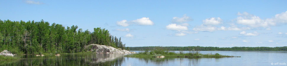 Canada's Boreal Forest: Lake