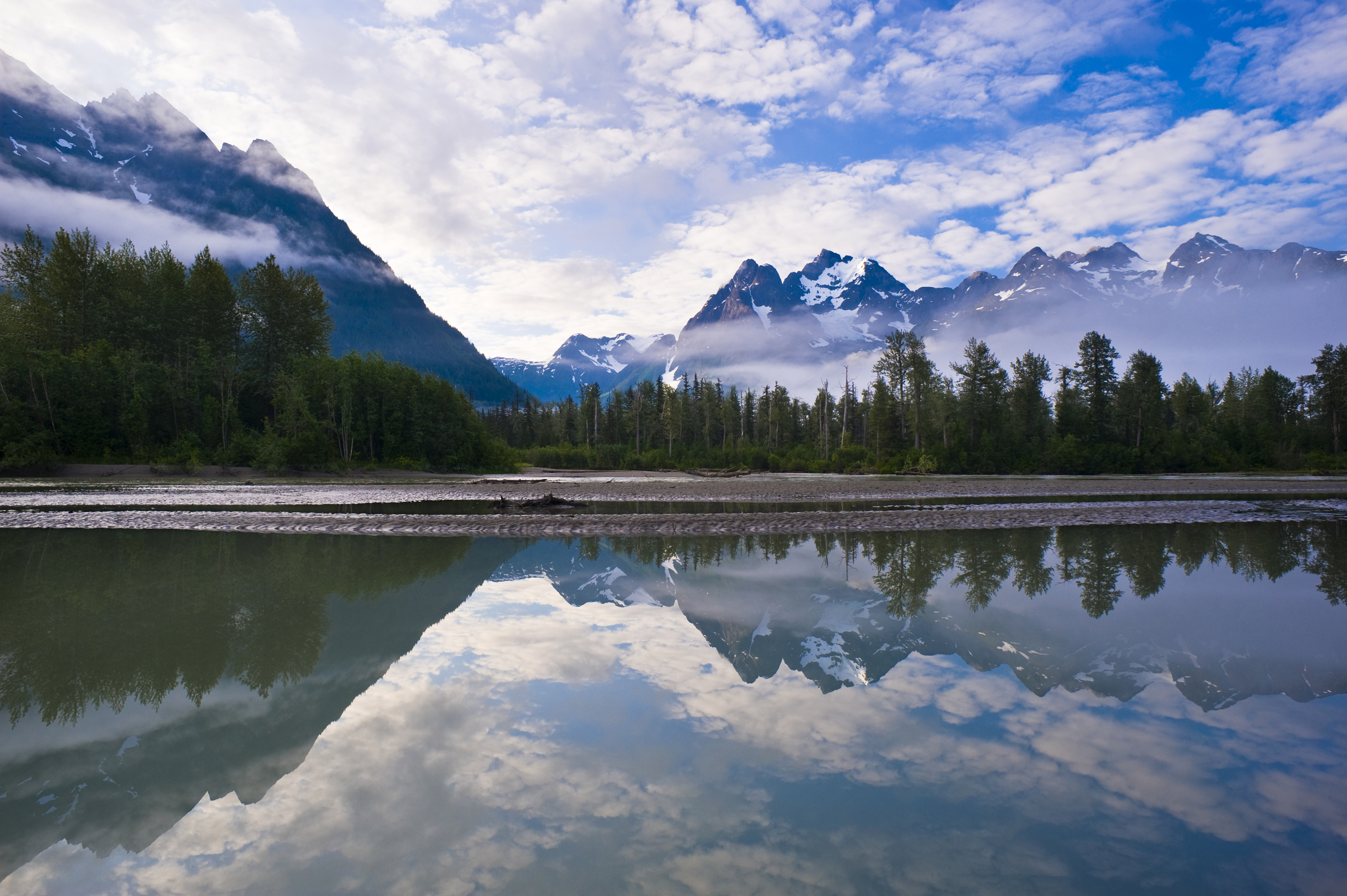 international boreal conservation science panel conserving the